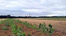 Project site in Märkisch Wilmersdorf